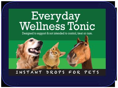 Pet-Remedy-Everyday-Wellness-Longetivity-Tonic-Bottle