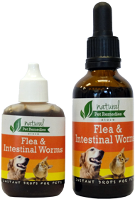 Pet-Remedy-Flea-and-Intestinal-Worms-Bottle